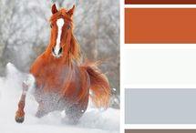Терракотовый цвет