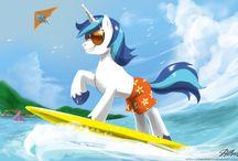 surf ponys