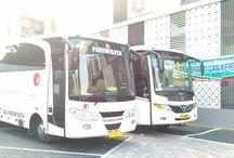 Sewa Bus Pariwisata Jogja / Sewa Bus Pariwisata di Jogja / Yogyakarta