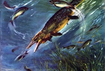 Zdeněk Burian (1905 - 1981) / Czech painter and book illustrator, widely known for his artistic recreations of extinct life.