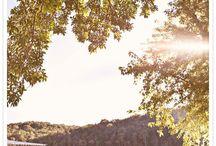 Pre-wedding Andrea & Andre / painel de referencia fotografica
