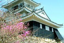 浜松スポット / おんな城主直虎の舞台となった浜松市の観光地などおススメのスポットを紹介しています(#^^#)