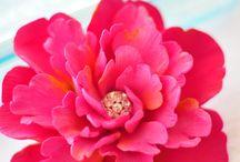flores - claycraft
