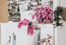 ✈️ Greece ✈️ / Travel advice, tips and tricks for Greece >>>>  travel, adventure, wanderlust, travelling, vacation, holiday, world, Asia, South America, Australia, Luxury travel, solo travel, travel tips, Europe, travel hacks, budget travel, Greece