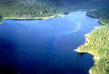 Fishing Lakes | Lacs de pêche / Our 14 fly-in camps on reservoir Gouin or privates lakes a great adventure to fish walleye and pike in Northern Quebec