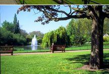 公園 ガーデン