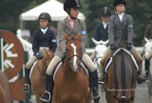Devon Horse Show / by Wild Horsefeathers