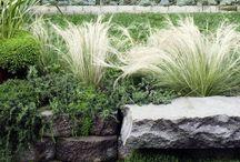 Landscape Designs / by Dieter Mohr