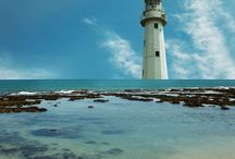 Lighthouses / by Avice Whittall