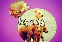 LES OURS. (my collect') / ©LauryRow. / VOIR AUSSI ICI :: https://www.facebook.com/pg/Disneycollecbell%20/photos/?tab=album&album_id=1016290885119268