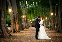 Wedding shoot Brisbane botanical gardens