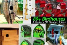 Bird houses and -feeders / Bird houses and -feeders