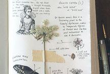 Notebook creativity