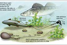Rybárske návnady