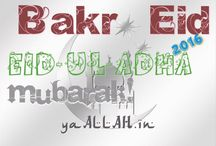 Eid-ul-Adha 2016 / Eid ul Azha Bakr Id Qurbani Farz Celebration, Eid Feast Festival of Bakra Eid