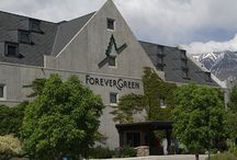 ForeverGreen Xpress / ForeverGreen is a company that stakes its future on timeless principles of health and humanity, and then trusting in the results.