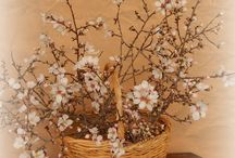 Baskets   ( my work )