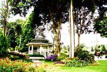 Paradise Garden, Davao City, Philippines