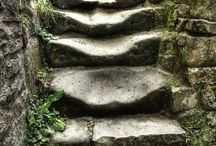 Stone steps/Trappe