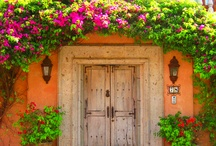 Doors / by Tammy Lorch