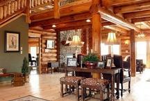 Log home ideas