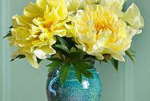 Blumen Impessionen