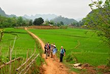 Mai Chau valley / If you have no time to go to Sapa, so you can discover Mai Chau Valley in Hoa Binh province, you can understand the way of life and culture of ethnic minority people and admire terraced field.