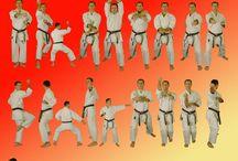 Karate Wado
