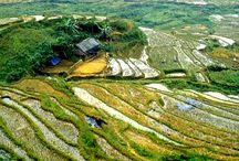 Voyages du Vietnam