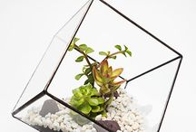 Aztec Collection / There is evidence that some of the first terrariums originated from the Mexican and Mayan cultures. The Aztec collection is defined by strong geometric lines and shapes creating a simple contemporary look whilst retaining the spirit of South America.