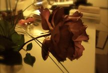 my photos // flower