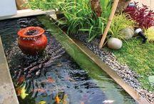 Taman dan Kolam Ikan