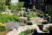 Okrasná záhrada vo svahu