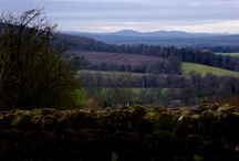The Greatest Landscape In The World! / Views of a peaceful February Shropshire Landscape
