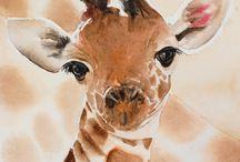 illustration - wildlife
