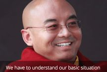 Mingyur Rinpoche / Quotes from Mingyur Rinpoche