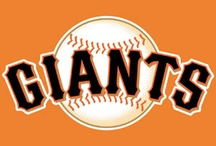 Baseball Season!! / by Chrissy Cole