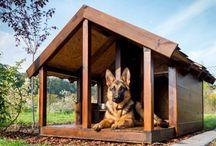 casetas de perro