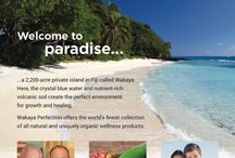 Wakaya Perfection / Paradise is closer than you think... the ultimate spa/island network marketing company with products that blow your socks off and impeccable timing. www.LoveWakaya.com