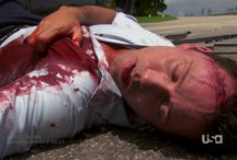 """Burn Notice 4x12 - Guilty as Charged / """"Zugzwang"""""""