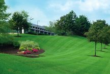 Commercial Lawn Services / Seaofgreenlawnservices Is the best commercial lawn care service provider.
