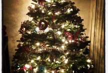 Holiday Spirit!  / by Denise Andres-Martinez