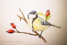 Malen und Zeichnen / Inspiration zum Malen und Zeichnen, Buntstiftzeichnungen, Bleistiftzeichnungen, Zentangle