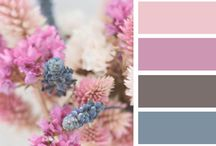 color for house