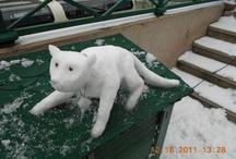 Kar Manzaraları (Snow Scenes)