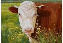 COWS / by karin s
