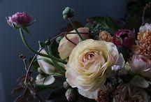 Concept: Flowers