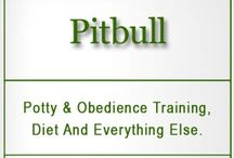 Pit Bull Diet