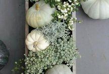 The Harvest Season