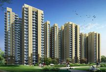 Rental commercial property Housing in Noida